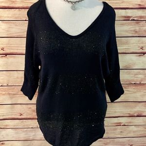Express Black Double V Sequin Sweater